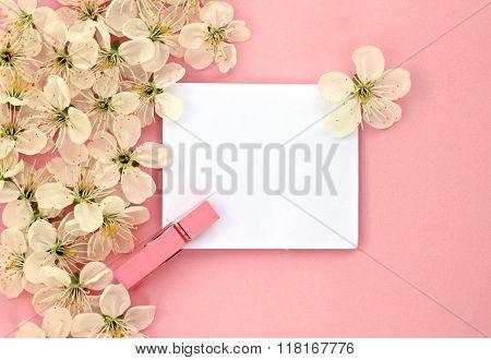Spring blossom welcome