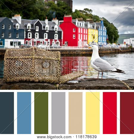 Tobermory quayside with colourful cottages, and a seagull with a lobster pot on the harbour wall. The Isle of Mull, Scottish highlands, UK. In a colour palette with complimentary colour swatches.