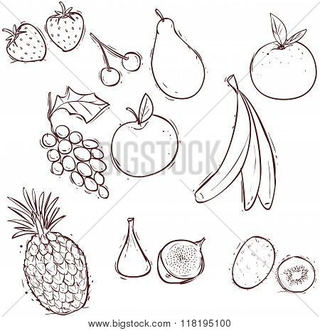 Vector Illustration Of A Stock-vector-fruits-set-of-vector-illustrations