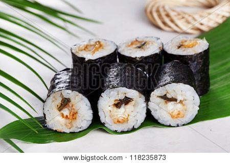 sushi roll acne eel chives mini kappa maki in the still life on a tropical leaves, kappamaki hosomaki poster