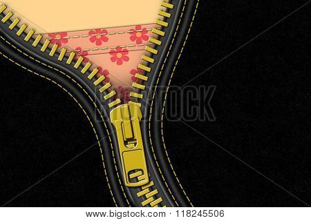 A Black Leather Zipper Background Illustration