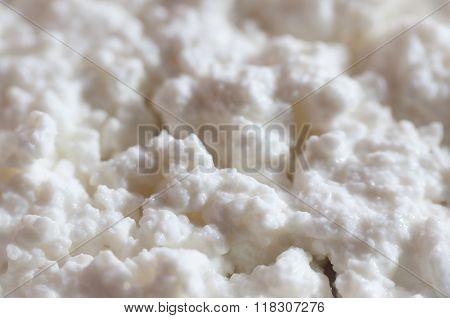 White Cottage Cheese Texture Closeup.