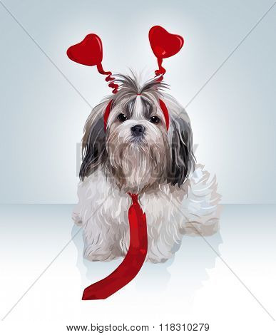 Shih tzu dog valentines day. Puppy with red hearts and tie.