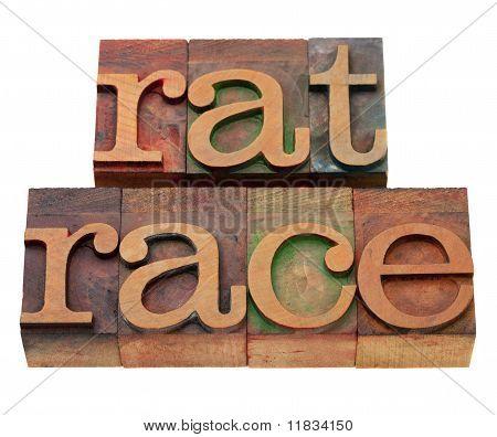 Rat Race Phrase In Letterpress Type
