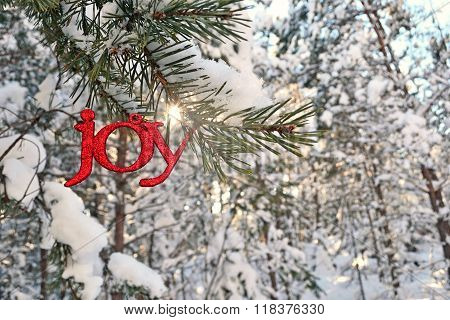 Sun Bursts Above A Glitter Joy Ornament In Winter