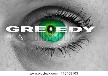Greedy Eye Looks At Viewer Concept Macro