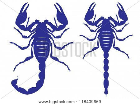 Set of vector silhouettes of a scorpion