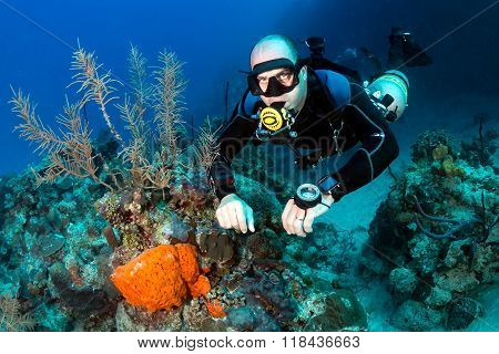 SCUBA diver on Sidemount on a Coral Reef