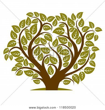 Vector Illustration Of Tree With Branches In The Shape Of Heart With, Love And Motherhood Idea Image