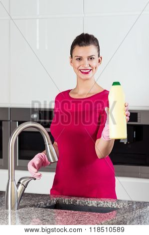 Housewife With Cleaning Fluid