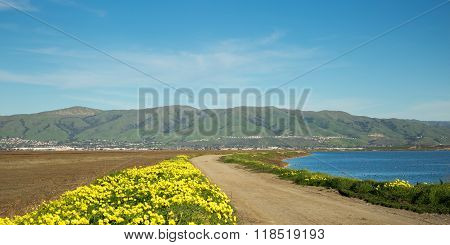 San Francisco South and East Bay Landscape, Northern California