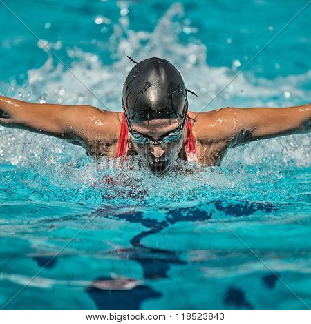 Butterfly Stroke Swimming