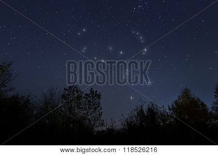 Constellation of Orion in real night sky, The Hunter