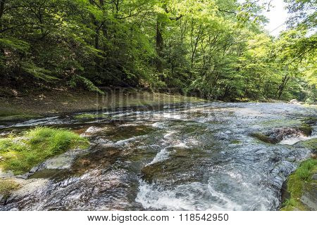 Shallow river flowing