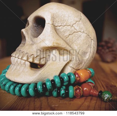 Close Up Of Vintage Human Skull Model On Beads