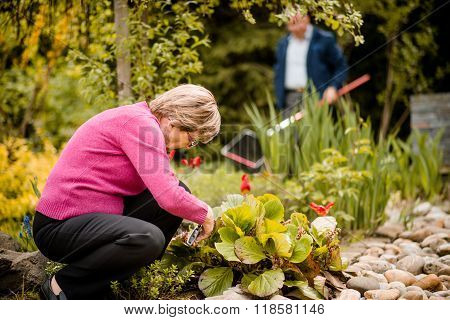 Senior woman pruning flowers