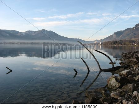 Is This A Fish Skeleton In The Wolfgangsee?