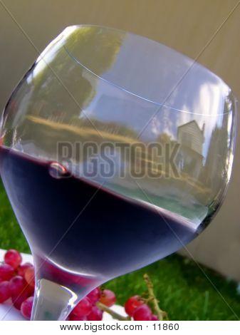 Scenic Wine