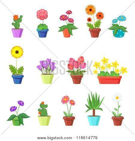 Cute spring flowers in pots vector