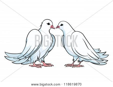 Kissing couple of doves