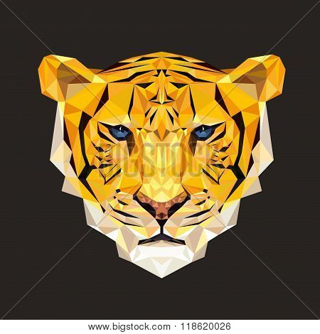 Tiger vector illustration in polygonal style. Tiger face for printing on t-shirts. Tiger low poly de