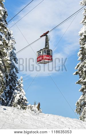 Cable Car Cabin Transports Tourists