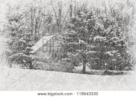 Old shack in pine trees viewed through a frosty window. poster