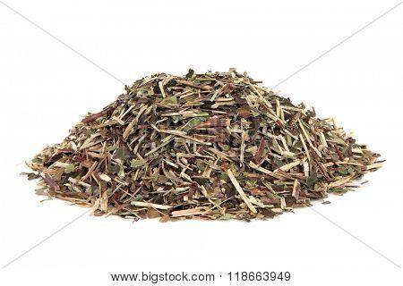 Skullcap herb used in natural alternative medicine over white background. Scutellaria.
