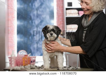 Woman and dog at pet grooming salon