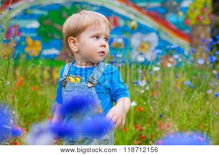 Cute Small Boy At The Field Of Flowers Having Good Time