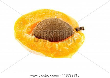 Apricot Inwardly