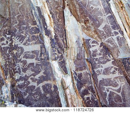 Primitive rock carvings