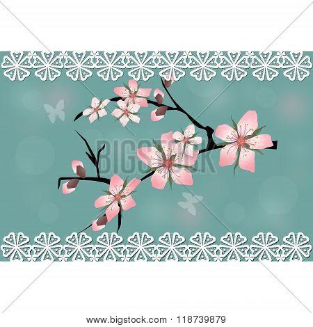 Cherry Blossom Branch Sakura Card