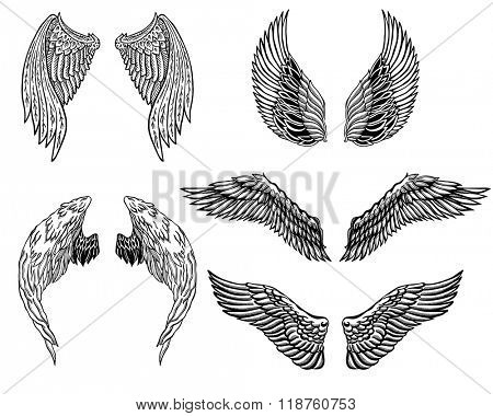 Heraldic wings set for tattoo or mascot design.