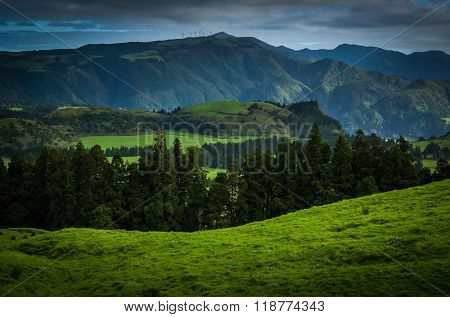 Green landscape of Sao Miguel
