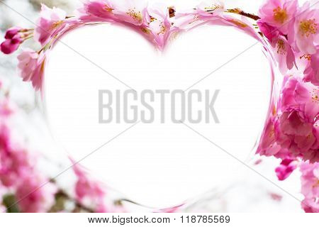 Heart shape photo frame background with pink cherry blossom