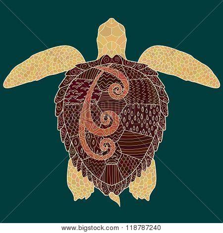 Caretta-caretta turtle with high details.