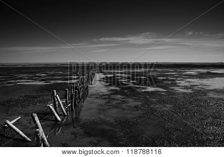 The Tide Is Coming In, At The Wadden Sea, Denmark