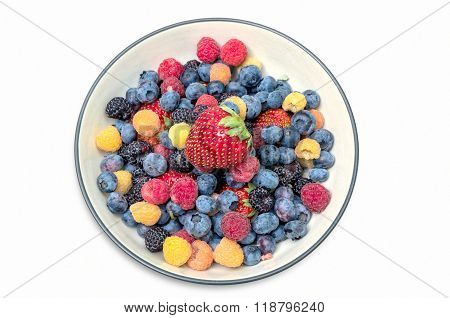 Colorful Berries in Bowl
