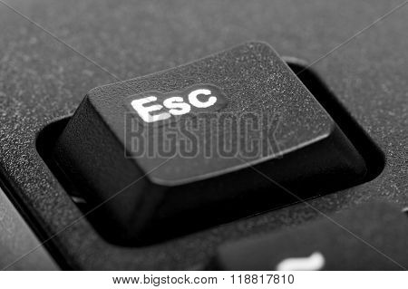 Electronic Collection - Detail Black Computer Keyboard