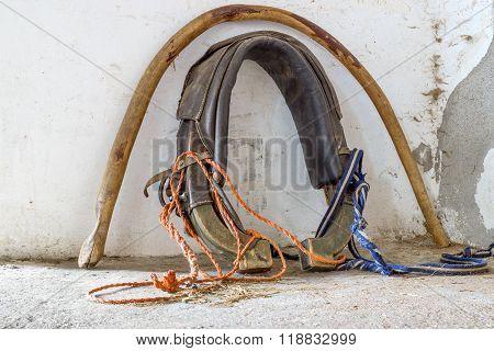 Old Horse Collar Near Wall