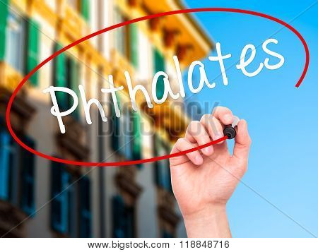 Man Hand Writing  Phthalates  With Black Marker On Visual Screen