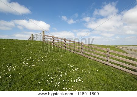 Waddendyke With Wooden Fence On The Island Of Terschelling In The Netherlands.