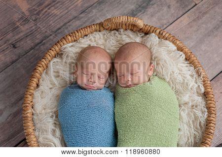 Twin Baby Boys Sleeping In A Basket