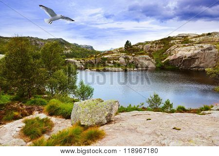 Mountains on the way to the Cliff Preikestolen in fjord Lysefjord - Norway - nature and travel background poster