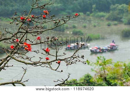 HANOI, VIETNAM - MARCH 30, 2014: Tourist on boat to visit Huong pagoda under blossom bombax ceiba flowers. HUONG Pagoda Festival is the biggest and longest annual festival in Vietnam.
