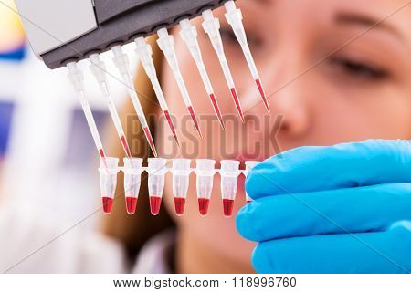 woman assistant in laboratory   research of cancer stem cells