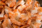 rinsing cooked shrimp in sink with water poster