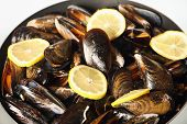 A picture of Spanish fried mussels and lemon poster