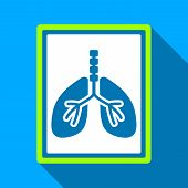 Lungs X-Ray Photo long shadow raster icon. Style is a flat light symbol with rounded angles on a blue square background. poster